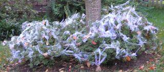 Halloween5web